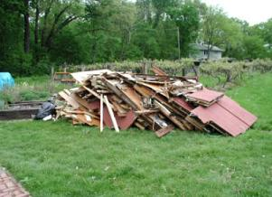 Yard Debris Clean Up